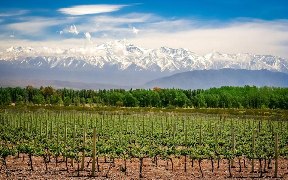 Domestic flights are good value so how about a trip to Mendoza? - @ Pawel Opaska