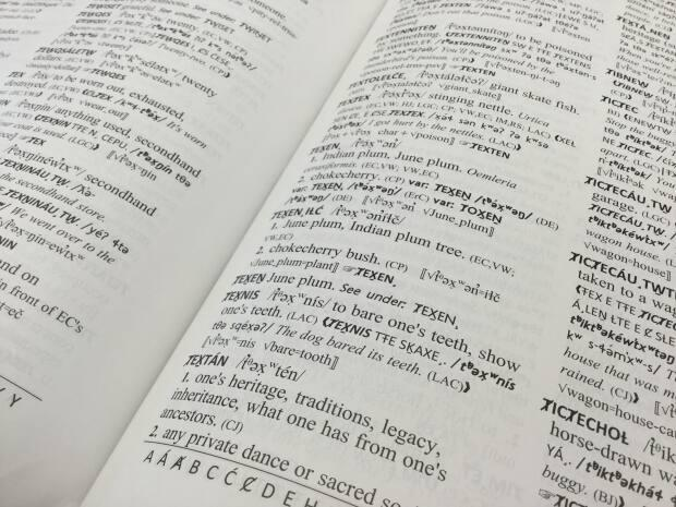 A new SENĆOŦEN dictionary was published in 2018 after decades of work to preserve and translate the Coast Salish language. (Liz McArthur - image credit)