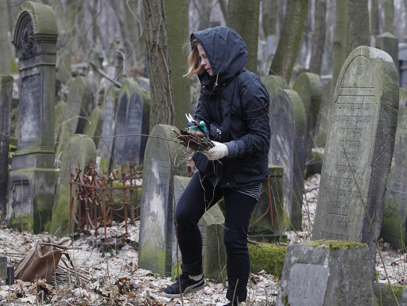 A volunteer helps to clean a Jewish cemetery in Warsaw, Poland, on Sunday April 14, 2013. The volunteers are answering a call by Polish officials to help clean the Okopowa Street Jewish Cemetery as the city launches a month of commemorative events marking the 70th anniversary of the Warsaw Ghetto Uprising. The events come amid a growing inclination in Poland to celebrate the country's Jewish history. (AP Photo/Czarek Sokolowski)