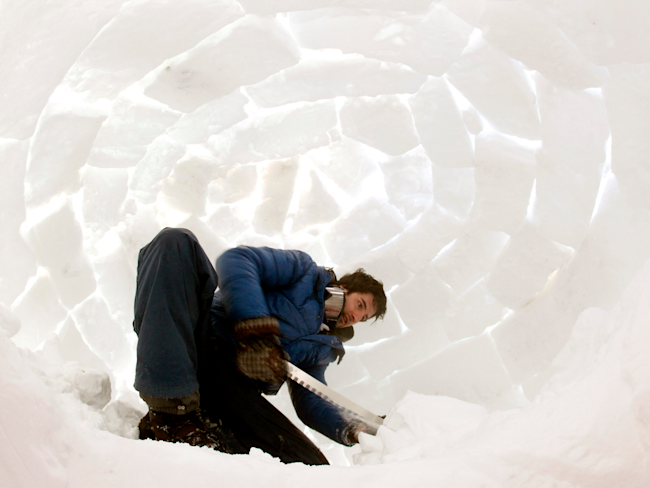 igloo guy cold freeze