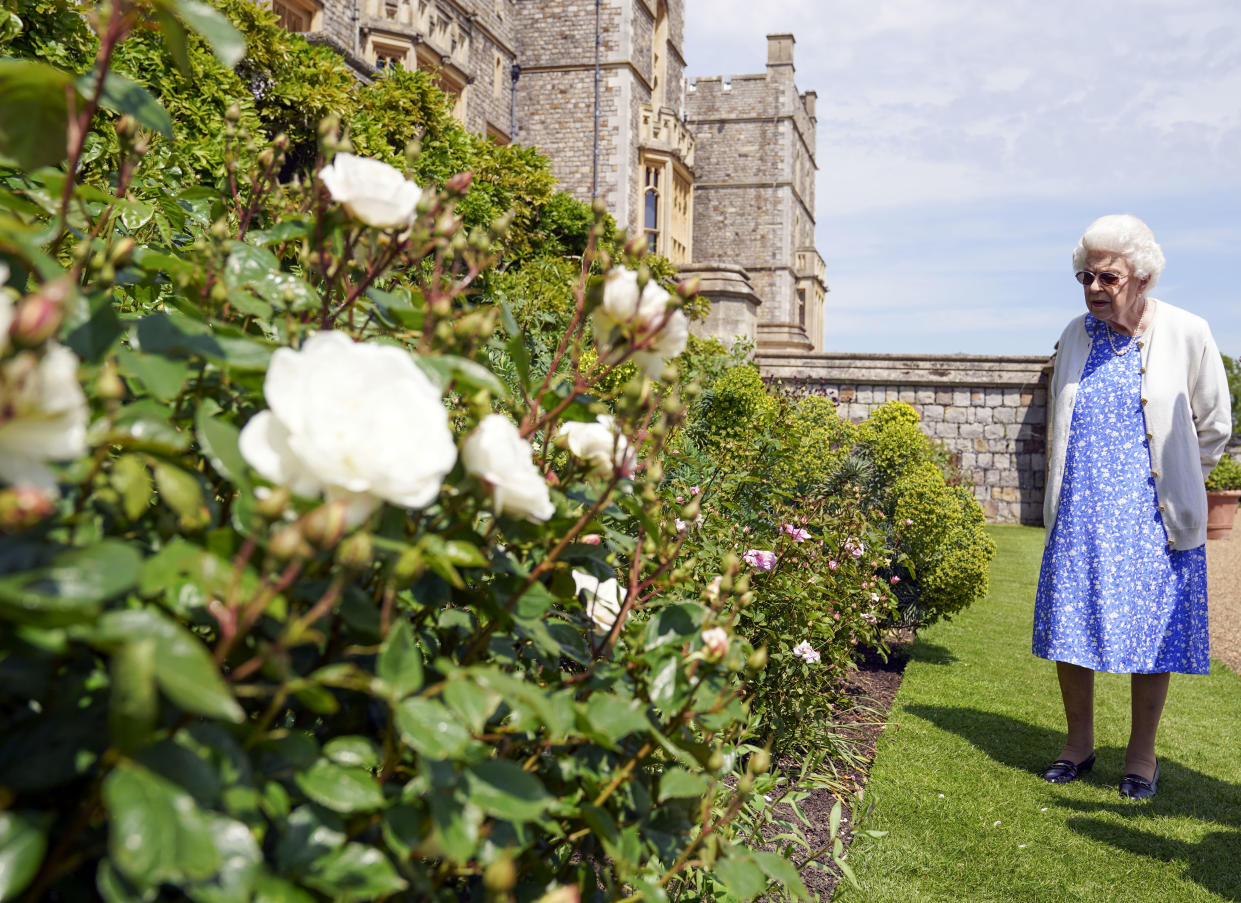 The monarch looking at the rose border at the Berkshire residence