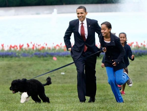 U.S. President Barack Obama with his daughters Malia (C) and Sasha (R) walk the family's new Portuguese water dog Bo, during the dog's introduction to the White House press corps on the South Lawn of the White House April 14, 2009 in Washington, DC. The six-month-old puppy is a gift from Sen. Edward M. Kennedy (D-MA) who owns several Portuguese water dogs himself. This breed of dog is considered a good pet for children who have allergies, as Malia does. (Photo by Win McNamee/Getty Images)