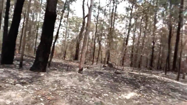 A screenshot of the video showing the devastation on the property. Photo: Twitter/russellcrowe