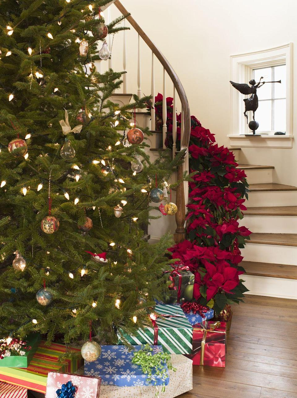 """<p>Go big with poinsettias this year. Instead of flanking your hearth, line your staircase with about a dozen ruby red plants. </p><p><a class=""""link rapid-noclick-resp"""" href=""""https://www.amazon.com/Sympathy-Silks-Poinsettias-Artificial-Weighted/dp/B01M1YA12N?tag=syn-yahoo-20&ascsubtag=%5Bartid%7C10072.g.34479907%5Bsrc%7Cyahoo-us"""" rel=""""nofollow noopener"""" target=""""_blank"""" data-ylk=""""slk:SHOP FAUX POINSETTIAS"""">SHOP FAUX POINSETTIAS</a></p>"""