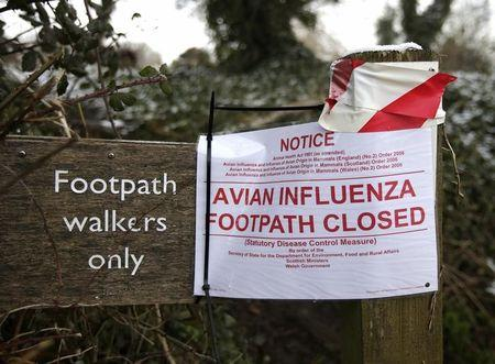 A sign warns of the closure of a footpath after an outbreak of bird flu in the village of Upham