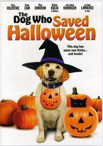 """<p><a class=""""link rapid-noclick-resp"""" href=""""https://www.amazon.com/Dog-Who-Saved-Halloween/dp/B005KTW68A/?tag=syn-yahoo-20&ascsubtag=%5Bartid%7C10070.g.3104%5Bsrc%7Cyahoo-us"""" rel=""""nofollow noopener"""" target=""""_blank"""" data-ylk=""""slk:STREAM ON AMAZON"""">STREAM ON AMAZON</a></p><p>Zeus and his owners just moved into a new house right in time for Halloween. But when Zeus and one of the Bannister family members decided to investigate a creepy neighbor, they discover a haunted house and bumbling burglars.<br></p>"""