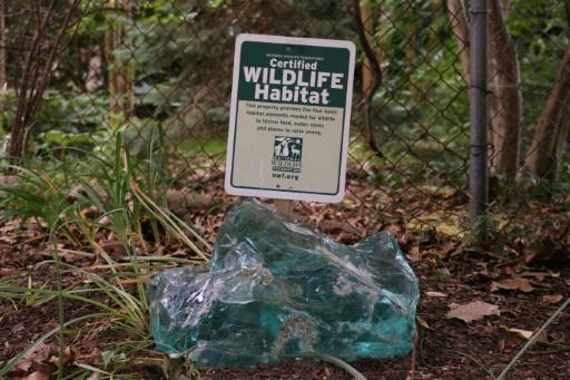 "Jim Nichols' rewilded garden shows off the ""Certified Wildlife Habitat"" sign he earned from a local non-profit group"
