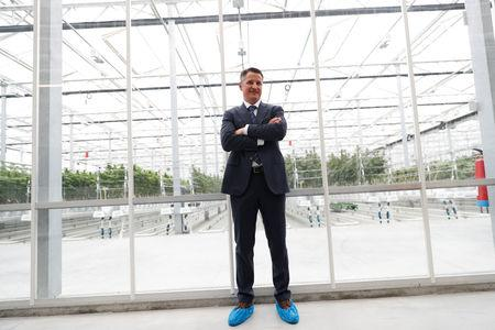 Tilray Chief Executive Brendan Kennedy poses outside a hothouse at the Tilray cannabis factory in Cantanhede, Portugal April 24, 2019.  REUTERS/Rafael Marchante