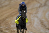 Kentucky Derby entrant Rock Your World works out at Churchill Downs Thursday, April 29, 2021, in Louisville, Ky. The 147th running of the Kentucky Derby is scheduled for Saturday, May 1. (AP Photo/Charlie Riedel)