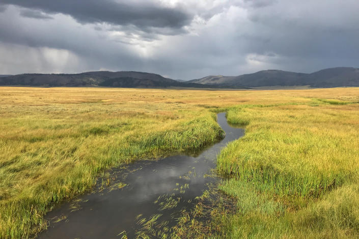 FILE - In this Aug. 29, 2020, file photo, is the east fork of the Jemez River flowing through Valles Caldera National Preserve in northern New Mexico. Gov. Michelle Lujan Grisham signed an executive order Wednesday, Aug. 25, 2021, making New Mexico the latest western state to join an ambitious effort to conserve nearly one-third of America's lands and waters by 2030. (AP Photo/Susan Montoya Bryan, File)