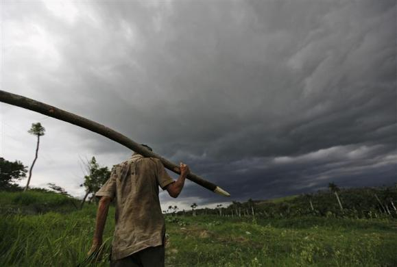 Cuban farmhand Bienvenido Castillo, nicknamed Lilly, carries a wooden stake while doing chores on his neighbor's dairy farm in Aranguito near Havana, Cuba July 21, 2011.