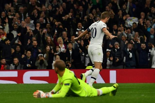 Harry Kane has 15 goals this season for club and country (AFP Photo/Ben STANSALL)