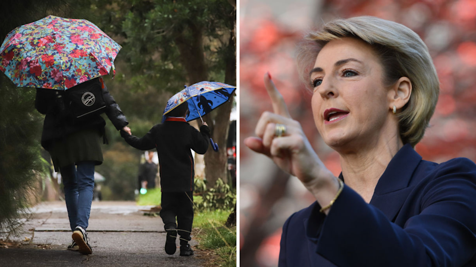 Right: Employment Minister Michaelia Cash. (Source: Getty)