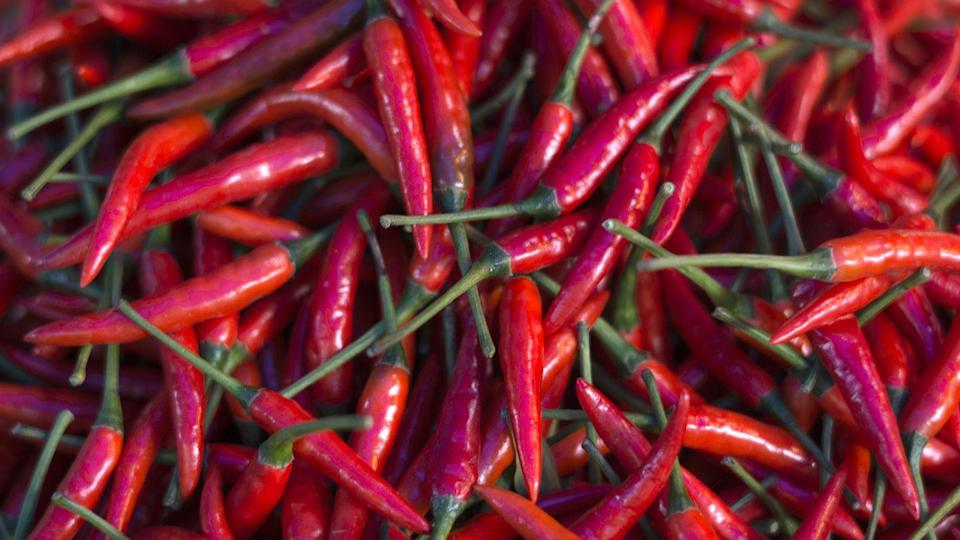 "<p>There's emerging research that when capsaicin—the stuff that puts the hot in hot peppers—hits certain receptors in the mouth and throat, it sort of jams the neuromuscular signals that were causing the cramp and makes it let go.</p><p>But if loading up on peppers isn't ideal, there might be a solution for you. <a href=""https://teamhotshot.com/"" rel=""nofollow noopener"" target=""_blank"" data-ylk=""slk:HotShot"" class=""link rapid-noclick-resp"">HotShot</a>, created by Nobel Prize winner Dr. Rod MacKinnon, is a spicy drink that triggers the same nerve receptors as hot peppers. A <a href=""https://pubmed.ncbi.nlm.nih.gov/28192854/"" rel=""nofollow noopener"" target=""_blank"" data-ylk=""slk:2017 study"" class=""link rapid-noclick-resp"">2017 study</a> published by Penn State researchers found that the drink makes your muscles more cramp-resistant and shortens the duration of your cramp. </p>"