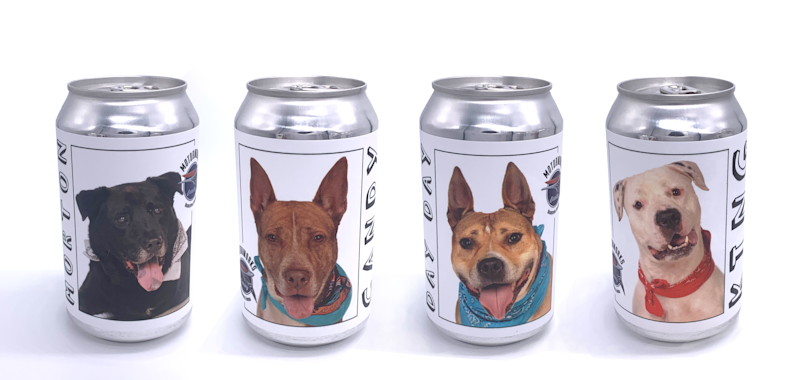 Brewery features adoptable dogs on beer cans to help them find homes