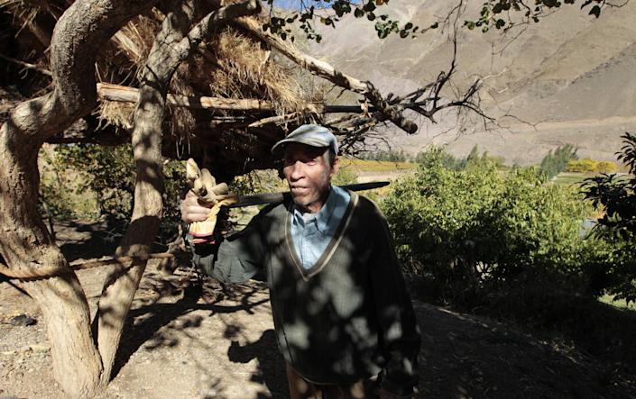 In this May 23, 2013, grape grower Pascual Abalos Godoy, 73, returns from the field in El Corral, a small town of about 200 inhabitants, near the facilities of Barrick Gold Corp's Pascua-Lama mining project in northern Chile. Abalos Godoy says he suffers from an eye inflammation similar to an allergic reaction, blaming his health problem on contamination caused by the mining project. Since the Barrick gold mine project moved in, residents claim the river levels have dropped, the water is murky in places and complain of health problems including cancerous growths and aching stomachs. (AP Photo/Jorge Saenz)