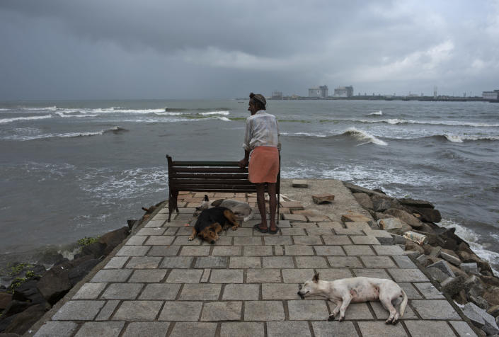 A man stands leaning on a bench as stray dogs sleep at a beach on the Arabian Sea coast in Kochi, Kerala state, India, Saturday, Sept. 18, 2021. Beaches and parks in the state that had been closed to prevent the spread of the coronavirus were reopened to public on Tuesday. (AP Photo/R S Iyer)