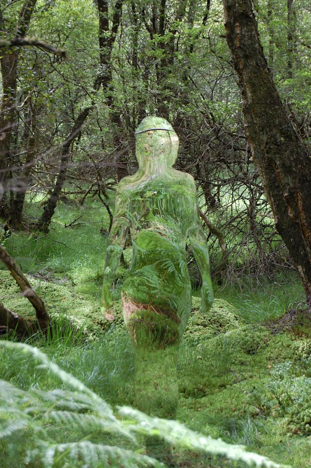 "Mirrored sculptures are displayed at the David Marshall Lodge near Aberfoyle in the Trossachs near Loch Lomond, Scotland. The installation is part of the town's regeneration and conveys the changes that have occurred in the landscape over the last few hundred years. The ""invisible"" figures appear to blend into the wooded background. (Photo by Rob Mulholland / Rex Features)"