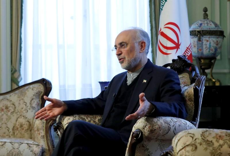 Iran's nuclear chief Ali Akbar Salehi speaks to Reuters during an interview in Brussels