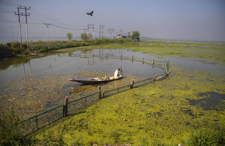 A Kashmiri boatman employed by the Lakes and Waterways Development Authority removes garbage from the Dal Lake in Srinagar, Indian controlled Kashmir, Tuesday, Sept. 14, 2021. Weeds, silt and untreated sewage are increasingly choking the sprawling scenic lake, which dominates the city and draws tens of thousands of tourists each year. (AP Photo/Mukhtar Khan)