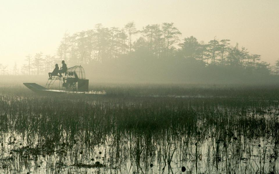 The Everglades - Getty