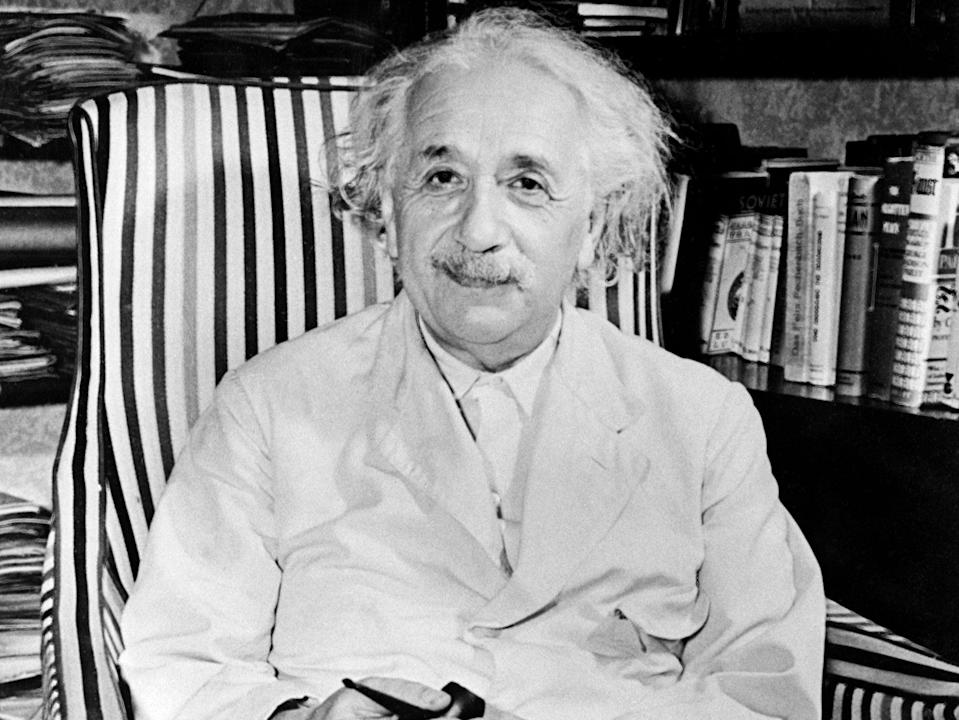 Albert Einstein suggested the study of birds and bees could help physicists understand important scientific processes (AFP via Getty)
