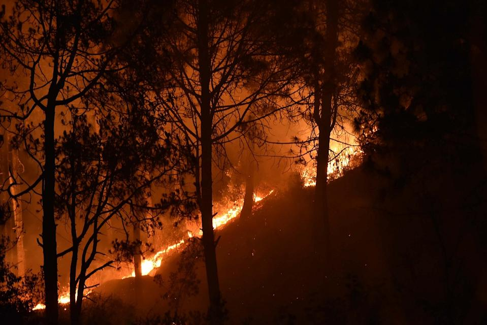 Forest fires in Uttarakhand (Photo by Arun Sharma/Hindustan Times via Getty Images)