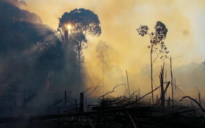 Clouds of smoke in an area consumed by fires near Labrea, Amazonas state in August 2020 - Edmar Barros /AP