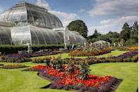 "<p>The birth of the <a href=""https://www.kew.org"" rel=""nofollow noopener"" target=""_blank"" data-ylk=""slk:Royal Botanic Gardens"" class=""link rapid-noclick-resp"">Royal Botanic Gardens</a> dates back to 1759 when Princess Augusta, mother of King George III, founded a nine-acre botanic garden within the Greater London area of Kew. Throughout the years, the Kew Gardens expanded to now span more than 300 acres of gardens and greenhouses and boasts the largest botanical and mycological collections in the world. A high treetop walkway offers impressive views of the grounds including the Palm House<em>,</em> which houses the lush indoor rainforest.</p>"