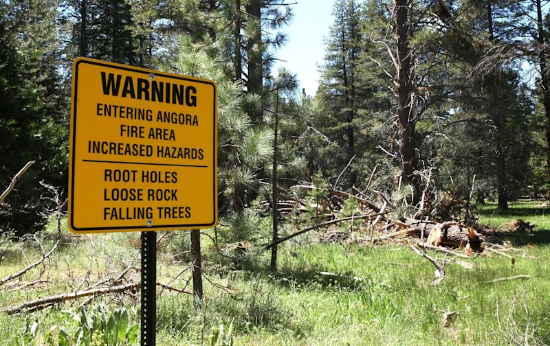 FILE - In this July 6, 2010, file photo, a warning sign is seen for hikers entering the area burned in the 2007 Angora Fire, the habitat of the rare black-backed woodpecker, near South Lake Tahoe, Calif. Conservationists are seeking Endangered Species Act protection for the rare woodpecker that feeds on beetles in burned forests. Four groups filed the listing petition Wednesday, May 2, 2012, for the black-backed woodpecker in the Black Hills, the Sierra Nevada and Eastern Cascades of Oregon. (AP Photo/Rich Pedroncelli, File)
