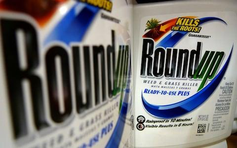 Bottles of Roundup herbicide, a product of Monsanto - Credit:  Jeff Roberson/AP