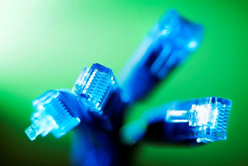 FILE PHOTO: Internet LAN cables are pictured in this photo illustration taken in Sydney