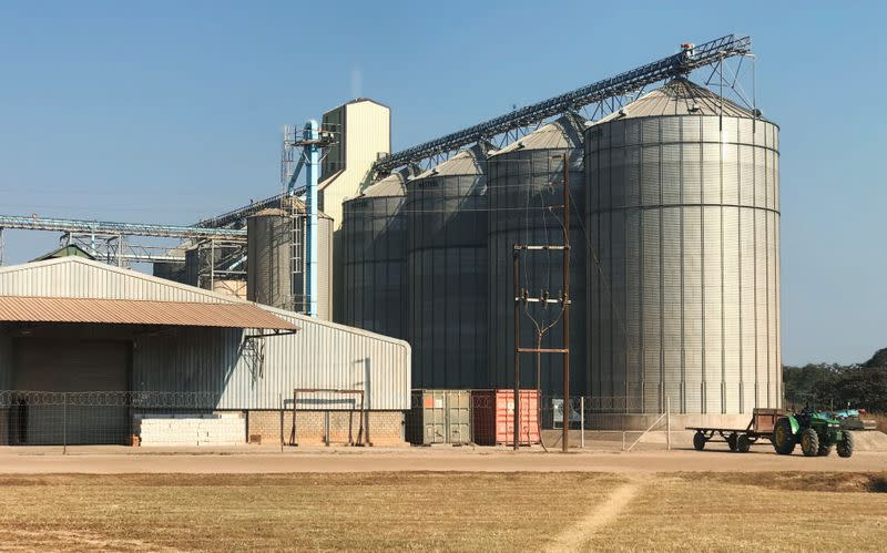 Grain storage silos are seen at Agri Options Ltd. farm in Mkushi, Zambia