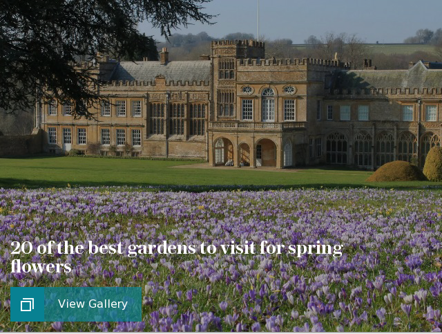 20 of the best gardens to visit for spring flowers