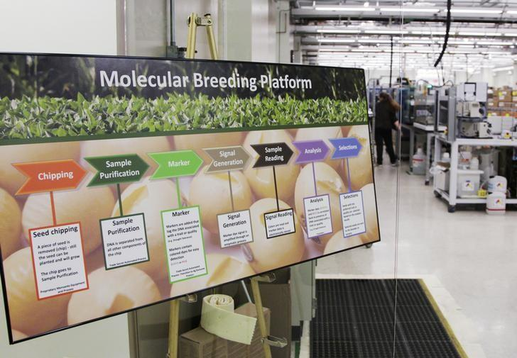 A sign showing the plant breeding process is seen in the molecular breeding lab in the Monsanto research facility in Chesterfield