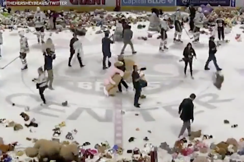 45,650 stuffed animals were thrown over the boards at the Hershey Bears' Giant Center.