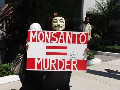 GM crops remain hugely controversial, to the point where (former) GM giant Monsanto is a synonym for corporate evil to many consumers (PRNewsfoto/IDTechEx)