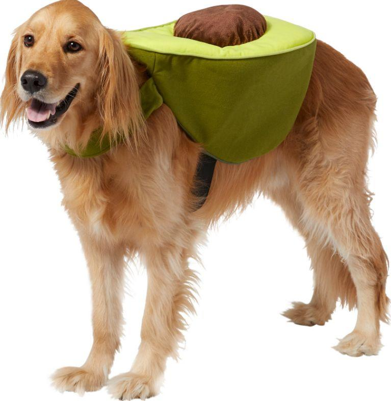"""Get this <a href=""""https://fave.co/3lUhqfK"""" target=""""_blank"""" rel=""""noopener noreferrer"""">Frisco Avocado Dog & Cat Costume for $15</a> at Chewy.It's available in size extra-extra-large and has a hook and loop strap."""