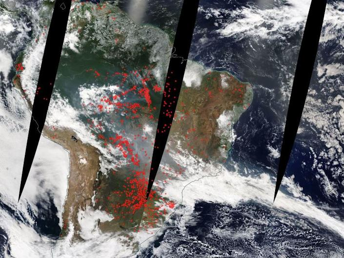 The fires, represented by red dots have spread across the rainforest: Screenshot/NASA