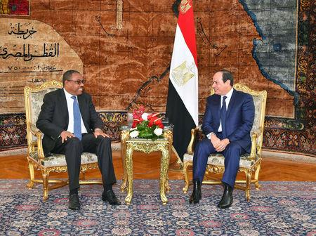 Egyptian President Abdel Fattah al-Sisi (R) and Ethiopian Prime Minister Hailemariam Desalegn talk during their meeting in the Egyptian Presidential Palace in Cairo, Egypt, January 18, 2018 in this handout picture courtesy of the Egyptian Presidency. The Egyptian Presidency/Handout via REUTERS