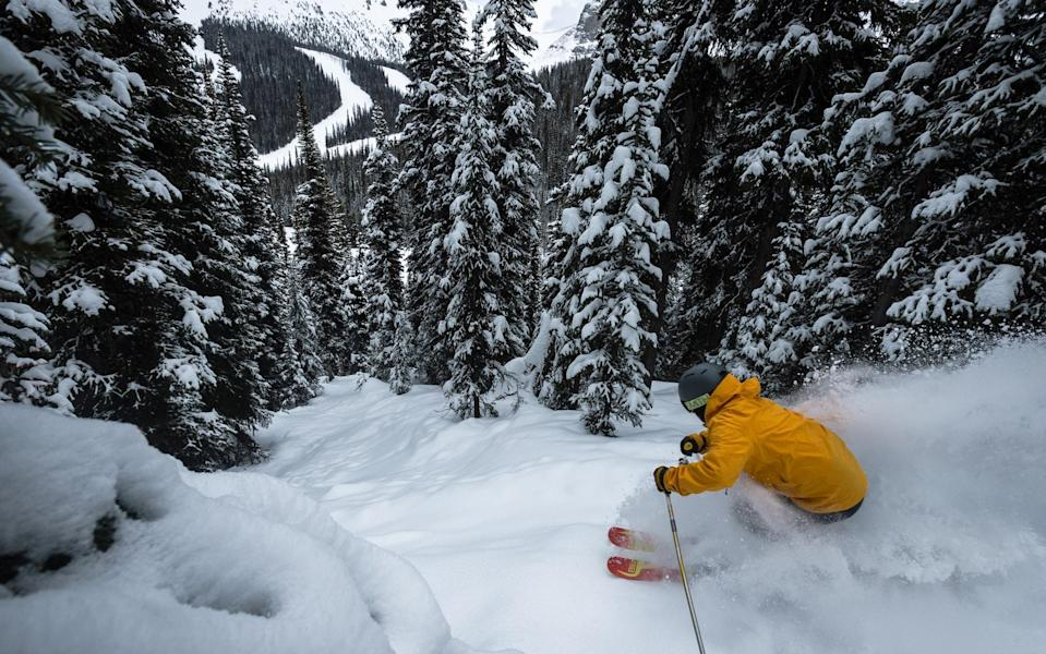 Banff offers three ski areas to explore - reuben krabbe/Banff Lake Louise Tourism