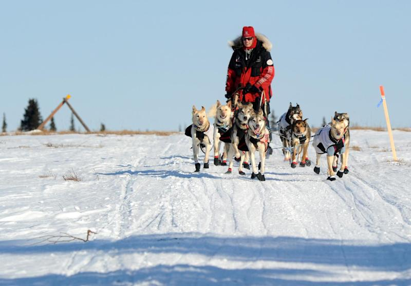 Aliy Zirkle drives her dog team across the portage from Kaltag to Unalakleet. Zirkle is the first musher to reach the Bering Sea in Unalakleet during the 2014 Iditarod Trail Sled Dog Race on Saturday, March 8, 2014. (AP Photo/The Anchorage Daily News, Bob Hallinen)