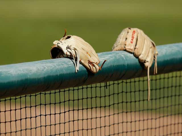 Gloves sit on top of a softball fence