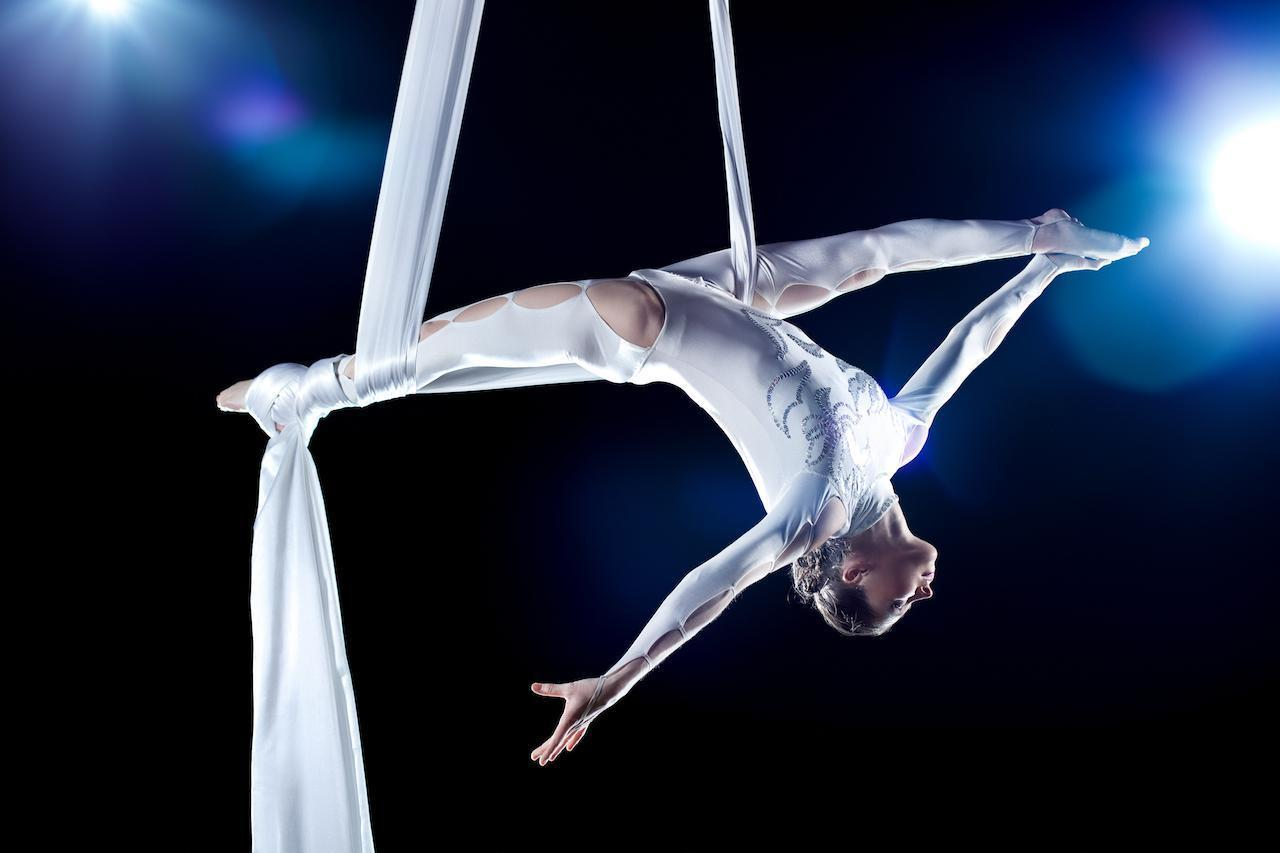 "<p>If you're looking to really wow your guests in the middle of your reception, hiring a sky dancer sure will do the trick. If there isn't one locally, aerial dance companies will travel nationwide and choreograph dances for any <a href=""https://www.theactivetimes.com/featured/top-song-year-you-were-born?referrer=yahoo&category=beauty_food&include_utm=1&utm_medium=referral&utm_source=yahoo&utm_campaign=feed"">special songs</a> you and your beloved may have.</p>"