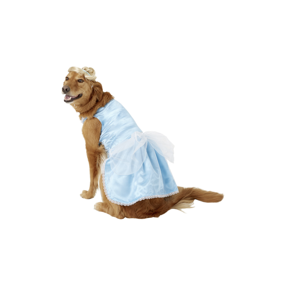 """<p><strong>Rubie's Costume Company</strong></p><p>chewy.com</p><p><strong>$11.75</strong></p><p><a href=""""https://go.redirectingat.com?id=74968X1596630&url=https%3A%2F%2Fwww.chewy.com%2Frubies-costume-company-cinderella%2Fdp%2F170989&sref=https%3A%2F%2Fwww.oprahdaily.com%2Flife%2Fg28714689%2Ffunny-dog-halloween-costumes%2F"""" rel=""""nofollow noopener"""" target=""""_blank"""" data-ylk=""""slk:Shop Now"""" class=""""link rapid-noclick-resp"""">Shop Now</a></p><p>This dog is absolutely ready for the ball in a sky-blue dress, collar and wig. No fairy godmother required!</p>"""