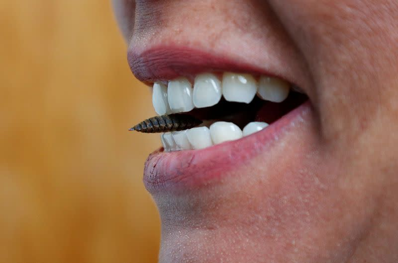 Dr. Tzompa Sosa poses with a black soldier fly larva between her teeth at Ghent University