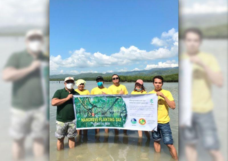 Mandani Bay plants 36,000 mangroves in Carcar