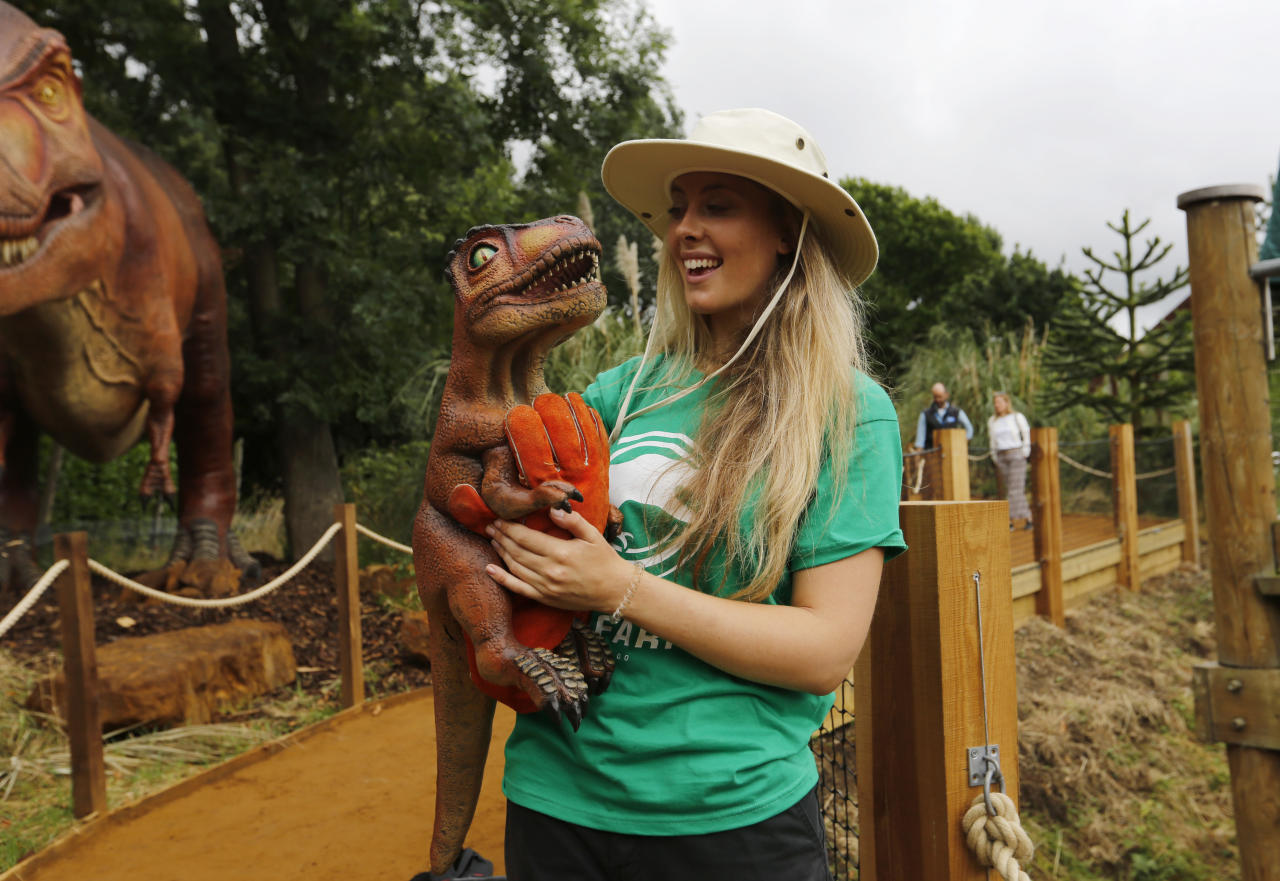 A tour guide poses with a puppet of a baby T. Rex in London Zoo's new Time Travel Safari exhibit named Zoorassic Park in London, Thursday, July 20, 2017. The six-week exhibit opens Saturday, July 22, 2017, and features robotic replicas of dinosaurs from the Mesozoic era. (AP Photo/Caroline Spiezio)