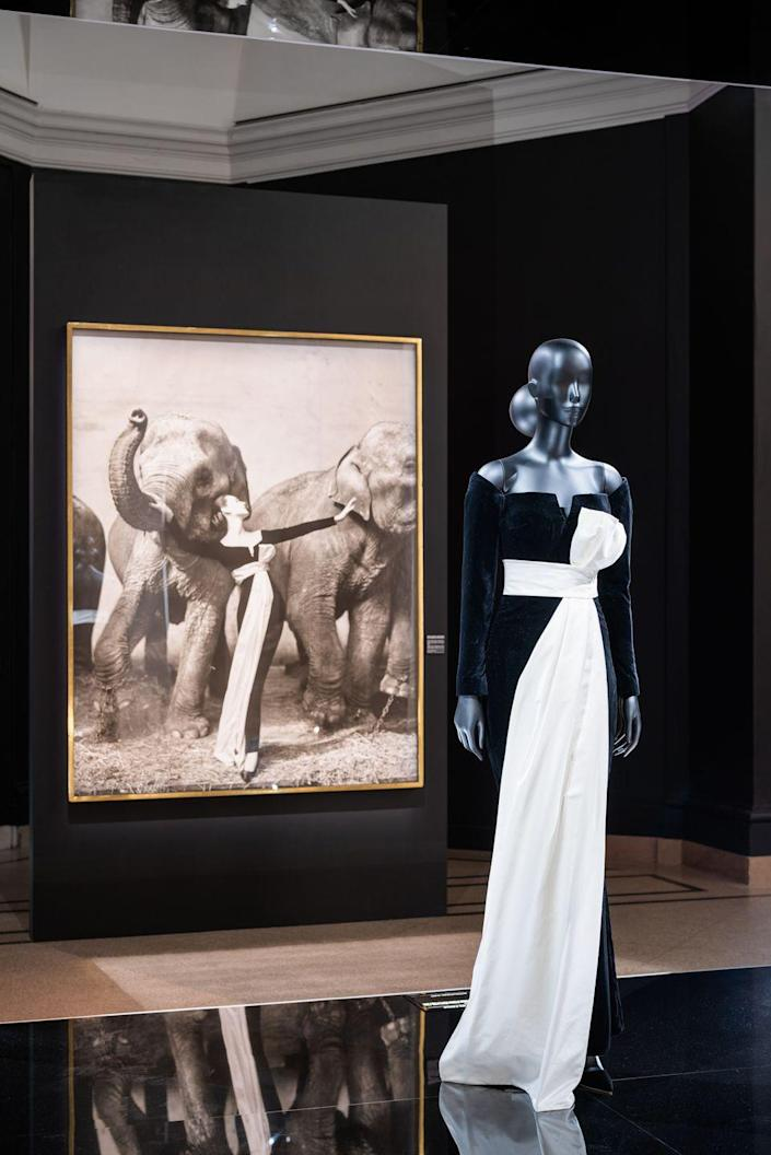 <p>As seen in photograph, Dior's velvet column dress has ample editorial appeal. </p>