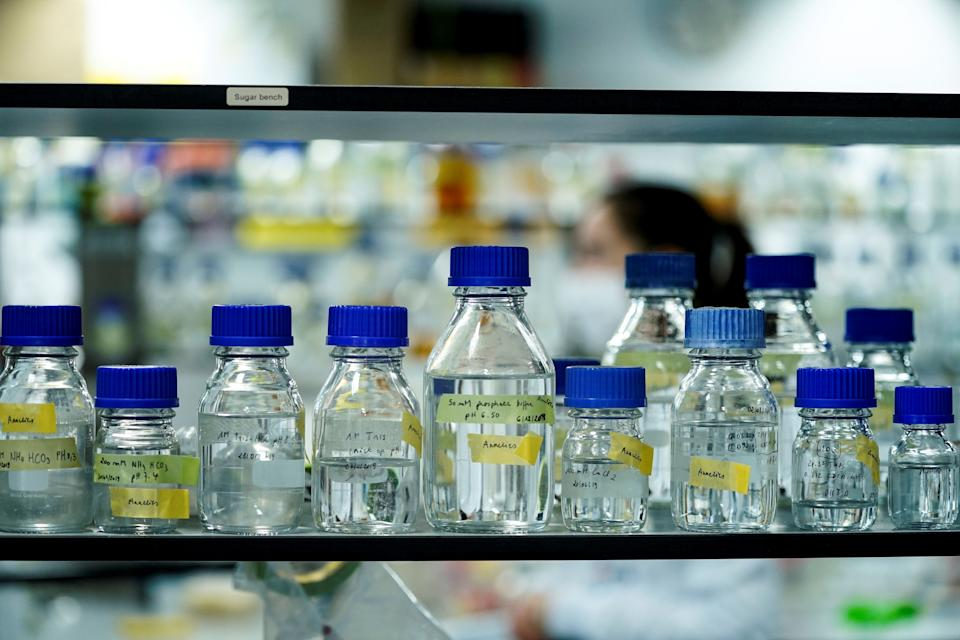 This picture taken on May 8, 2020 shows laboratory test bottles at the Vlaams Institute of Biotechnology of Ghent University on May 08, 2020 in Ghent. (Photo by kenzo tribouillard / AFP) (Photo by KENZO TRIBOUILLARD/AFP via Getty Images)